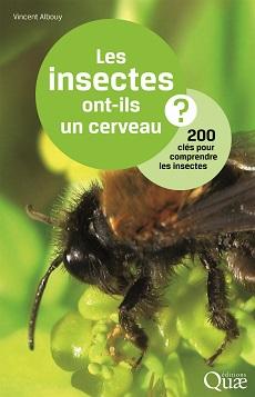 02189HDQ_insectes